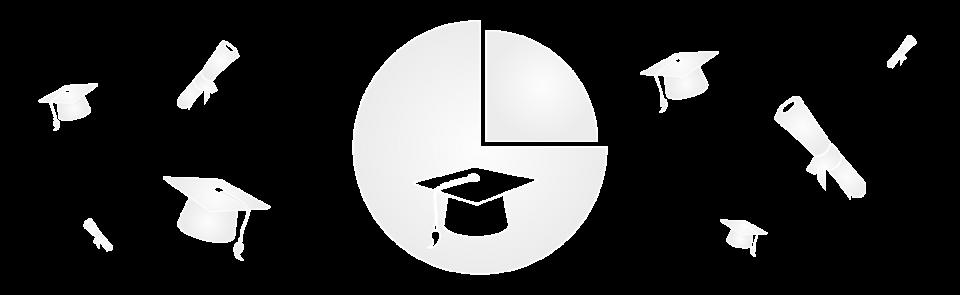 Banner: Diploma Statistic